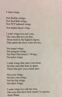 11_13_17, 5_25 PM Wingspoem